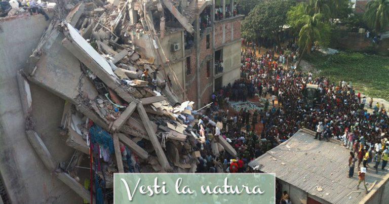 Rana Plaza - Edificio crollato in Bangladesh