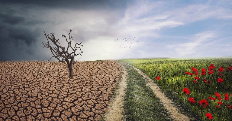 Climate change: world divided in two